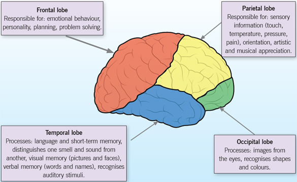An overview of epilepsy in children and young people
