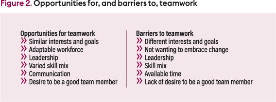 Teamwork in nursing: essential elements for practice