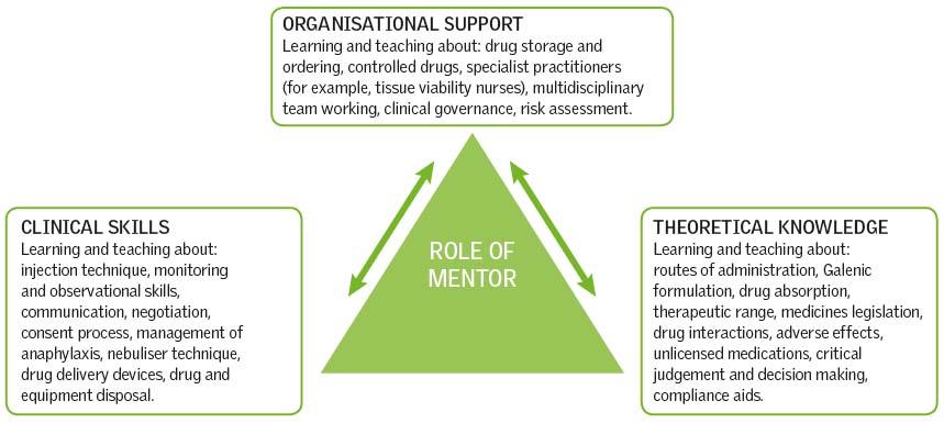 Mentoring students in medicines management