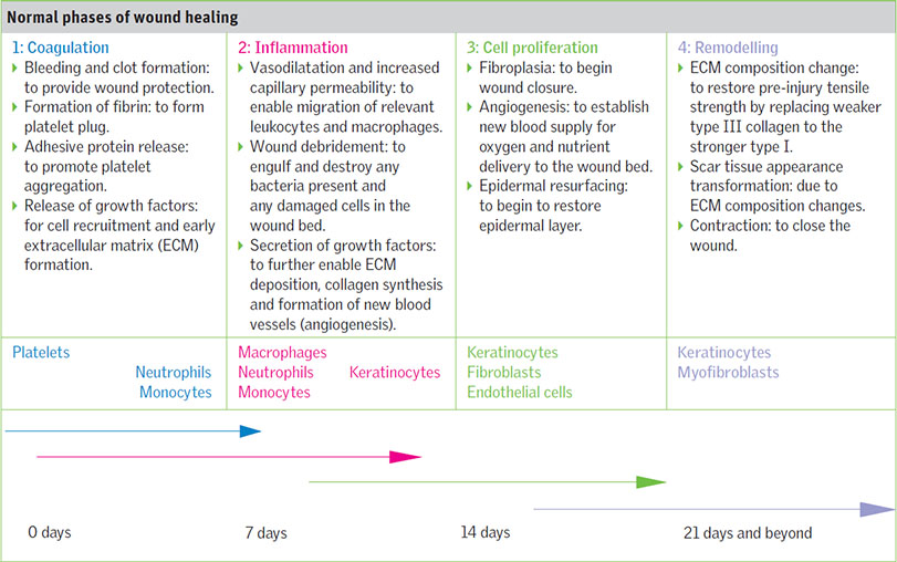 Wound debridement: a clinical update
