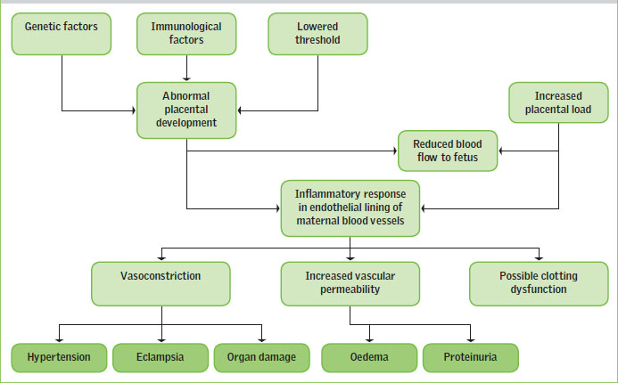 Clinical presentation, assessment and management of pre