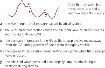 Role of central venous pressure monitoring in critical care settings