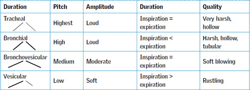 Observing the sick child: Part 2c Respiratory auscultation